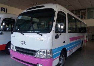 Bán xe Hyundai County đời 2017, hai màu, nhập khẩu nguyên chiếc giá 1 tỷ 240 tr tại Tp.HCM