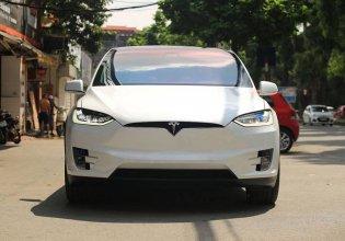 Tesla X P100D đời 2018, màu trắng, nhập khẩu nguyên chiếc giá 9 tỷ 330 tr tại Hà Nội