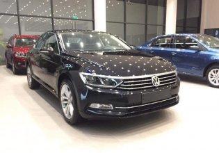 Xe Volkswagen Passat Bluemotion 2019 - Hotline: 0909717983 giá 1 tỷ 450 tr tại Tp.HCM