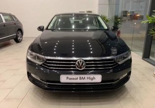 Xe Volkswagen Passat Bluemotion 2019 - hotline: 0909717983 giá 1 tỷ 480 tr tại Tp.HCM