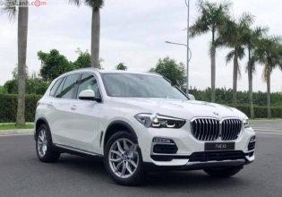 Bán BMW X5 xDrive35i 2019, màu trắng, nhập khẩu   giá 4 tỷ 299 tr tại Tp.HCM