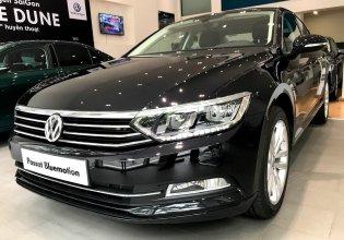 Bán ô tô Volkswagen Passat E 2018, màu nâu, nhập khẩu giá 1 tỷ 420 tr tại Tp.HCM