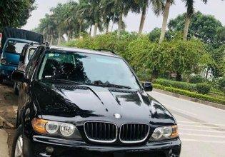 Bán ô tô BMW X5 đời 2005, màu đen, xe nhập, còn nguyên zin máy, số, ghế da còn mới giá 340 triệu tại Hà Nội