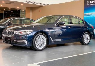 Bán BMW 5 Series 530i sản xuất 2019, màu xanh lam, nhập khẩu   giá 3 tỷ 69 tr tại Tp.HCM