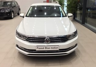 Bán Volkswagen Passat Bluemotion – Đẳng cấp sang trọng dành cho doanh nhân giá 1 tỷ 480 tr tại Tp.HCM