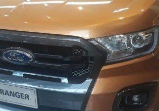 Bán Ford Ranger Wildtrak Bi-Turbo sản xuất năm 2019  giá 880 triệu tại Hà Nội
