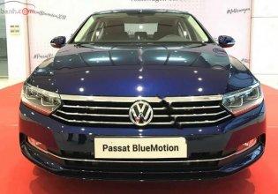 Bán Volkswagen Passat Bluemotion SX 2019, màu xanh lam, nhập khẩu nguyên chiếc giá 1 tỷ 480 tr tại Khánh Hòa