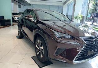 Bán Lexus NX đời 2019, xe nhập giá 2 tỷ 510 tr tại Tp.HCM