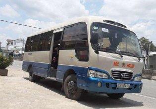 Bán Hyundai County sản xuất năm 2004, nhập khẩu, giá chỉ 155 triệu giá 155 triệu tại Hậu Giang