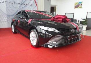 Bán xe Toyota Camry 2.5Q 2019 nhập Thái  giá 1 tỷ 235 tr tại Tp.HCM