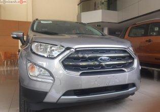 Cần bán Ford EcoSport Titanium 1.5L AT năm sản xuất 2019, màu nâu giá 595 triệu tại Hà Nội