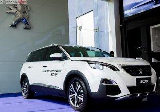Cần bán xe Peugeot 5008 sản xuất 2019, màu trắng giá 1 tỷ 324 tr tại Bình Dương