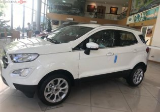 Bán Ford EcoSport Titanium 1.5L AT năm sản xuất 2019, màu trắng giá 595 triệu tại Hà Nội