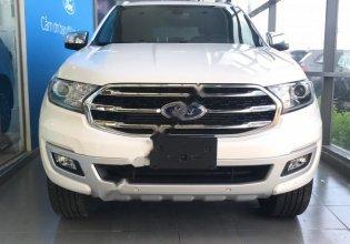 Cần bán xe Ford Everest Titanium 2.0L 4x2 AT 2019, màu trắng, nhập khẩu   giá 1 tỷ 117 tr tại Tây Ninh