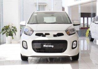 Bán ô tô Kia Morning năm 2020, màu trắng, xe nhập, giá tốt giá 299 triệu tại Cần Thơ