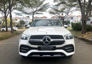 Cần bán Mercedes GLE450 đời 2019, màu nâu, nhập khẩu nguyên chiếc, mới 100% giá 4 tỷ 350 tr tại Tp.HCM
