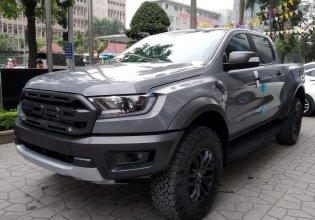 Bán xe Ford Ranger Raptor năm 2020, màu xám, xe nhập giá 1 tỷ 189 tr tại Tp.HCM